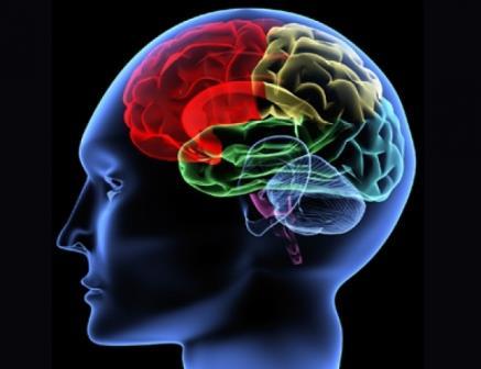 راهها و روشهای افزایش قدرت حافظه کوتاه مدت و تمرکز