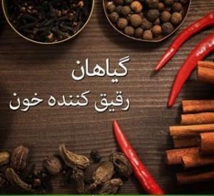 گیاهان دارویی رقیق کننده خون در طب سنتی ایران