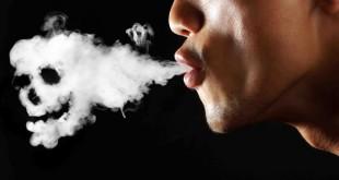 ترک سیگار در طب سنتی با گیاهان دارویی برگ توتون_هندی